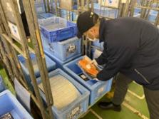 株式会社ちよだ鮨 仕入部 新木場デリポートでの検品スタッフの画像・写真